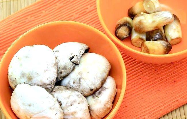 Cum sa faci ciuperci cu gata de umplutura