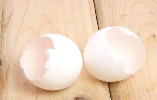 Imaginea intitulată Reciclarea ouălor în activitățile de grădinărit Pasul 1Bullet1