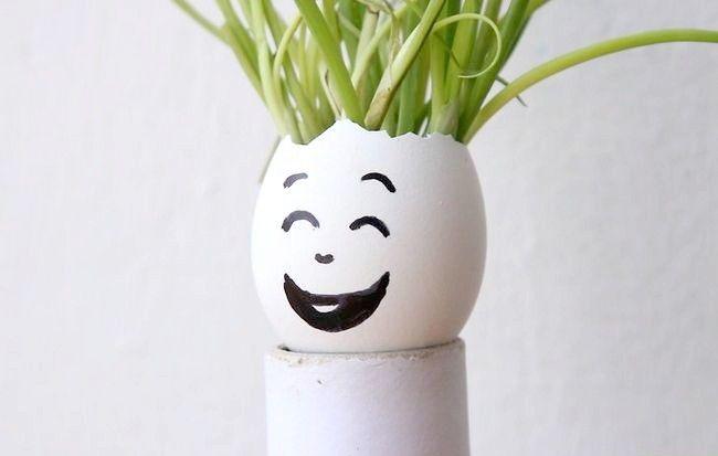 Imaginea intitulată Reciclarea ouălor în activitățile de grădinărit Pasul 6