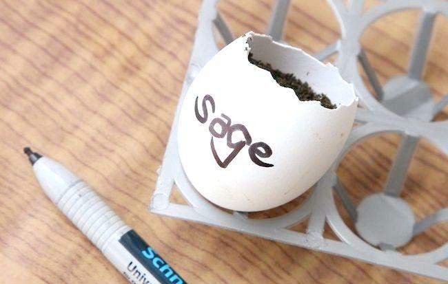 Imaginea intitulată Reciclarea ouălor în activitățile de grădinărit Pasul 1Bullet5