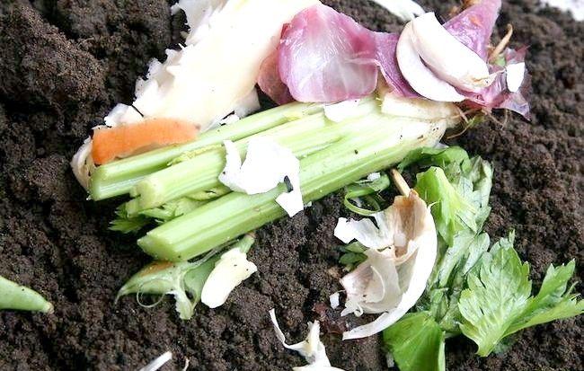 Imaginea intitulată Reciclarea ouălor în activitățile de grădinărit Pasul 2