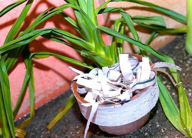 Imaginea intitulată Recycle Paper Step 1