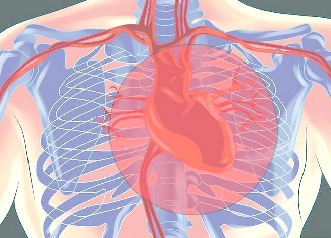 Imaginea intitulată Recunoașterea durerilor de angina pe scară 3