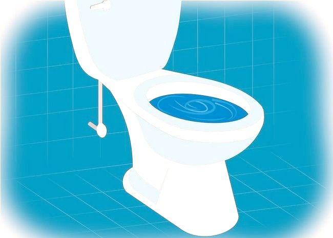 Imagine intitulată Eliminarea unui toaletă Pasul 7