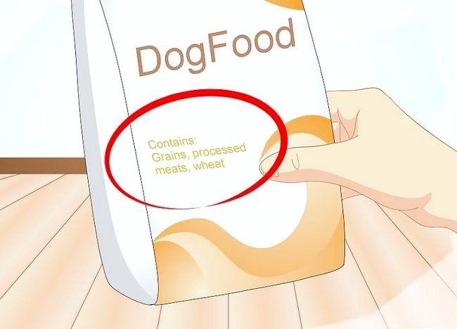 Imaginea intitulată Determinați dacă câinele dvs. are alergii alimentare Pasul 4