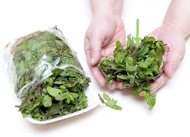 Imaginea intitulată A scăpa de acnee utilizând frunzele de menta Pasul 1