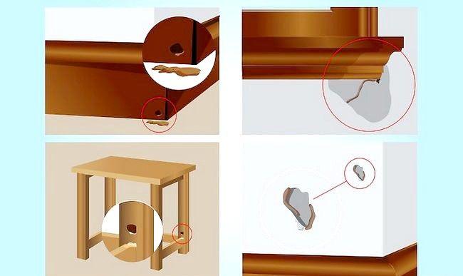 Cum sa scapi de termiti