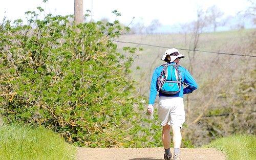 Imagine intitulată Traseu colorat în Calero County Park 1127