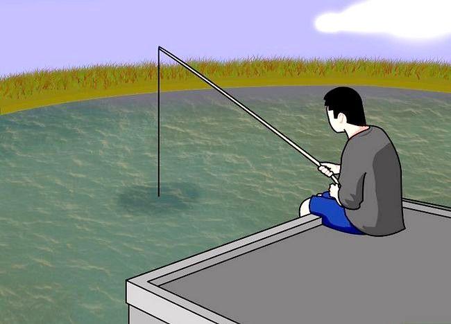 Cum să deveniți pescar profesionist