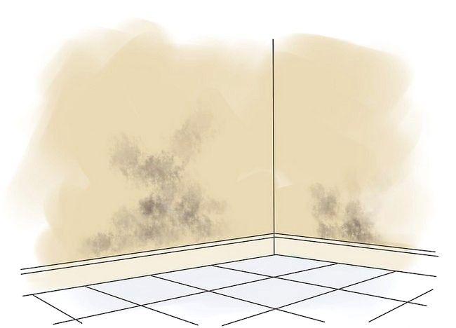 Cum de a repara mucegaiul pe pereții interiori