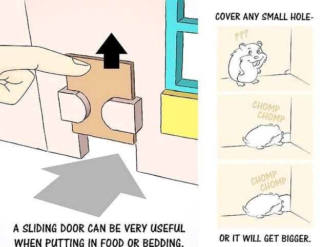 Imaginea intitulată Faceți o Casa de păpușă într-o cusca de hamster Pasul 6
