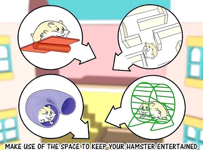 Imagine intitulată Faceți o păpușă într-o cusca de hamster Pasul 11