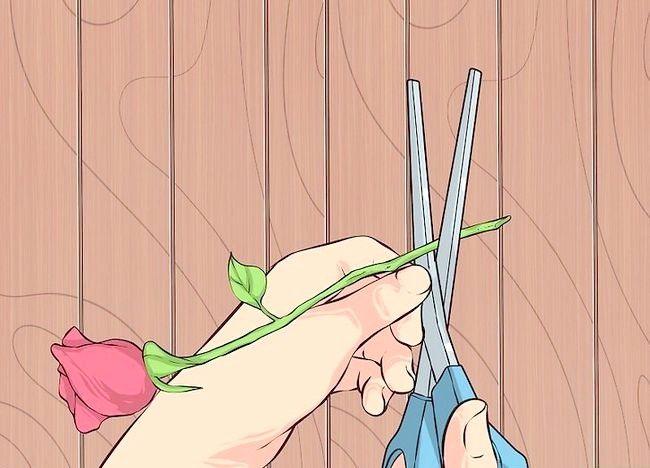 Imagine intitulată Transportul florilor tăiate Pasul 2