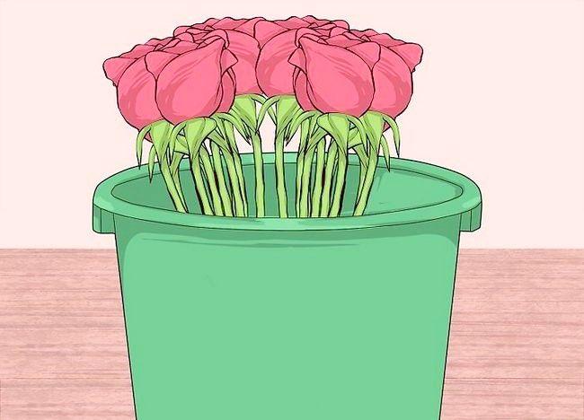 Imaginea intitulată Transportul florilor tăiate Pasul 9