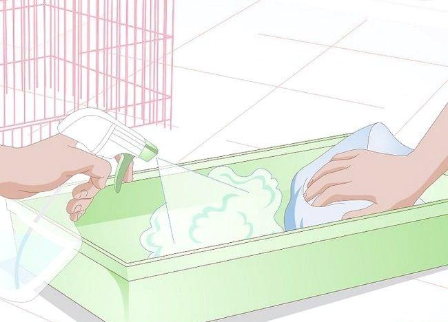 Imaginea intitulată Tratarea bolii de piele la hamsteri Pasul 5