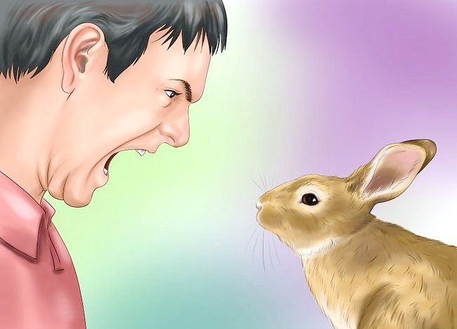 Poza intitulată Train a Rabbit Step 16
