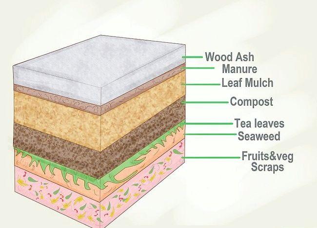 Imagine intitulată Turn Clay In Soil Growing Step 5