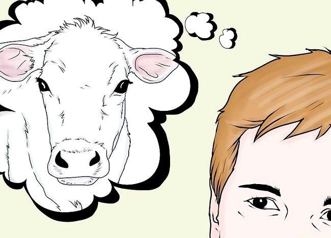 Cum să vaccinați o vaca