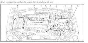 Cum să verificați nivelul uleiului într-o mașină